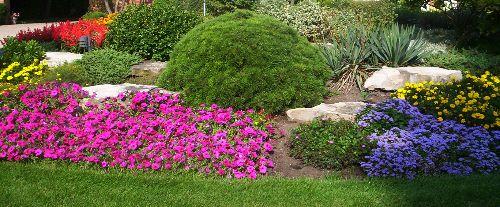 Perennial and Annual Gardens