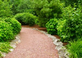 Mulch Path